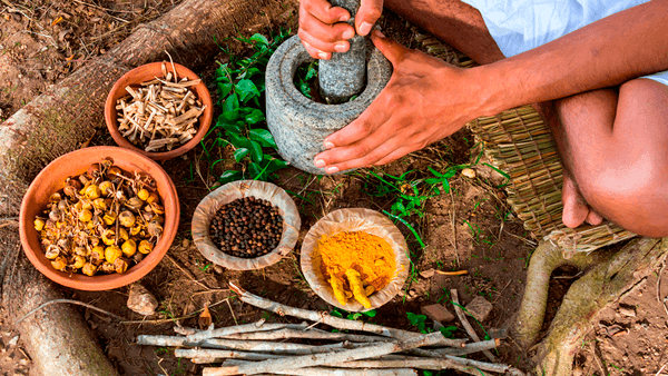 Mayan medicine and herbalism for beginners