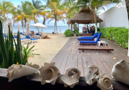 Yoga DayPass Puerto Morelos 2020 - Yoga Kia Ora